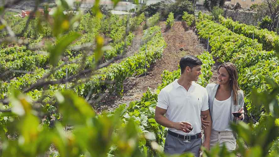 best-canary-island-for-couples_wine